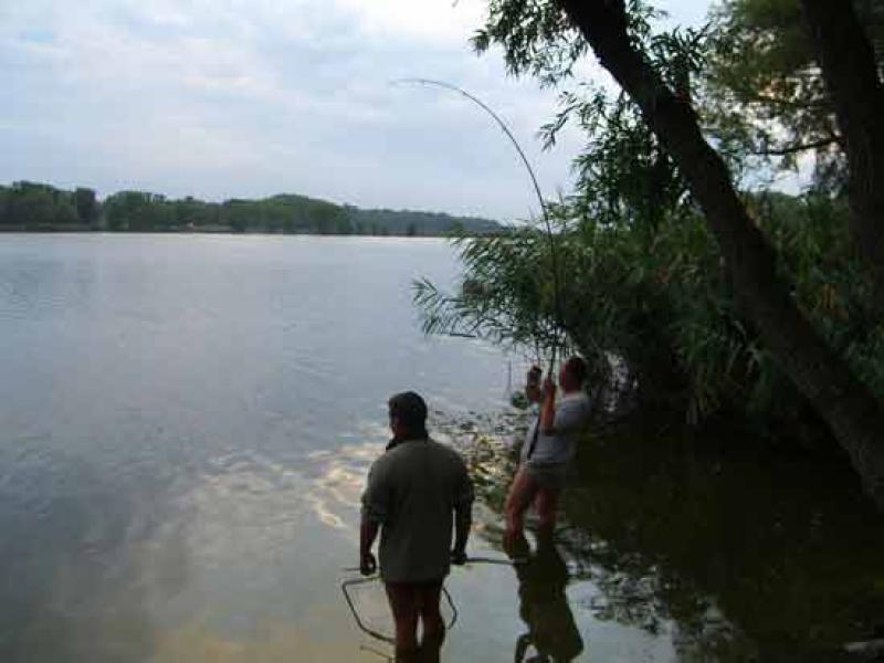 золотой сазан рыбалка купон